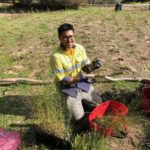 SERCUL Project Manager Darren taking seedlings out of pot