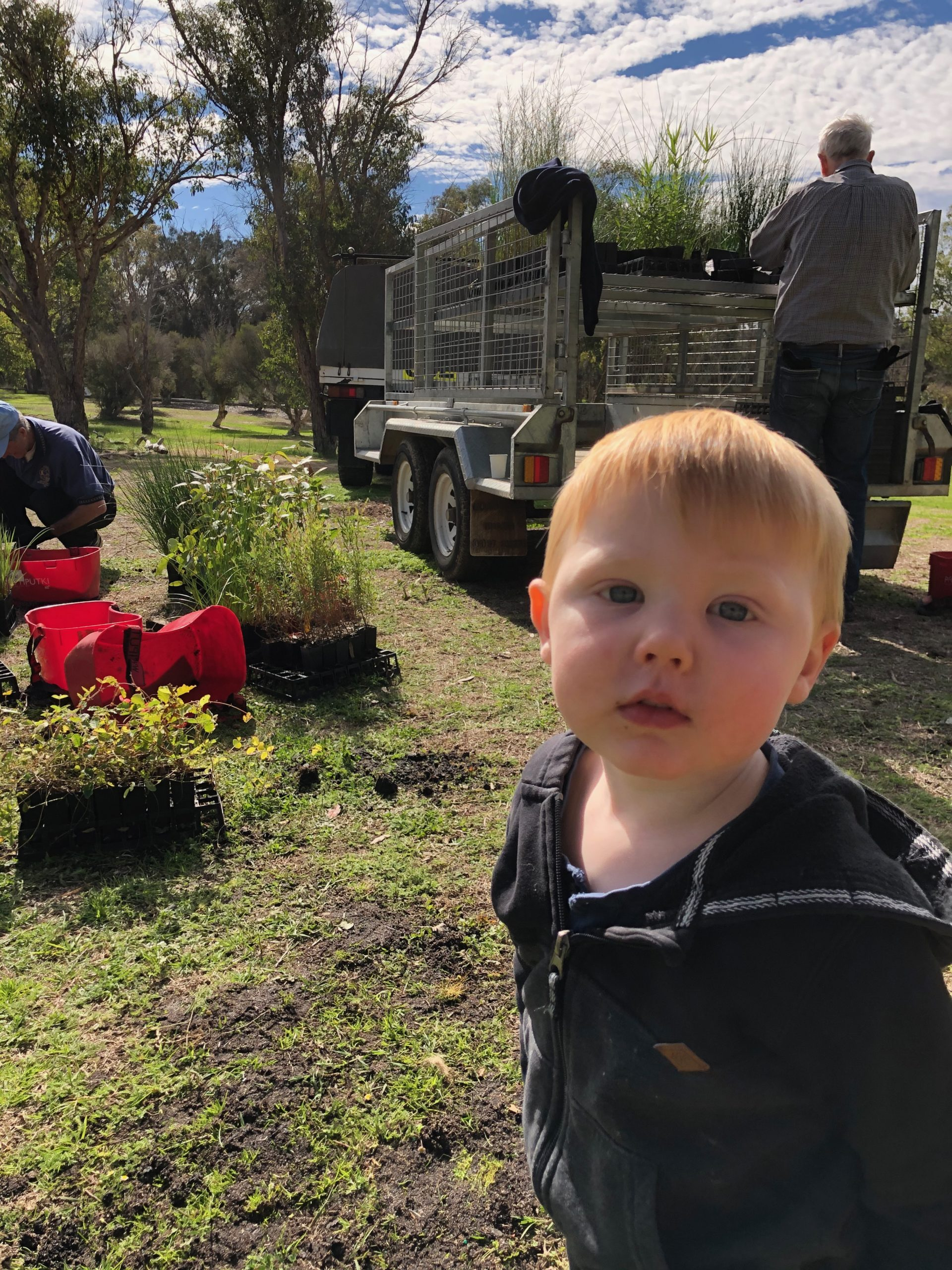 A young boy is looking at the camera with seedlings behind him